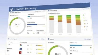 local business report and analytics