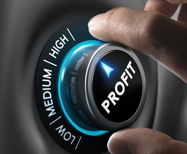 roi profits